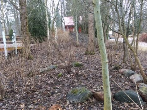 Skötselplan_omr_skog_efter