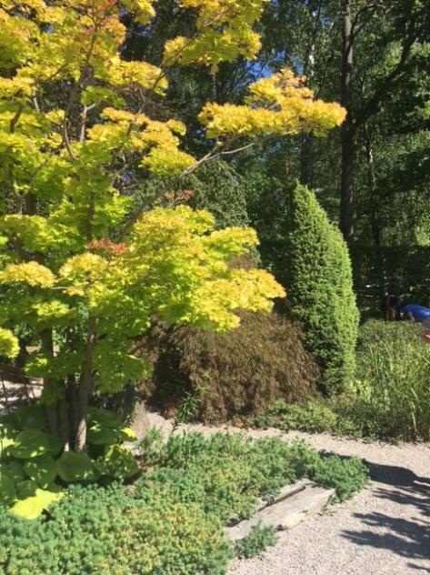 Zetas_visningsträdgård