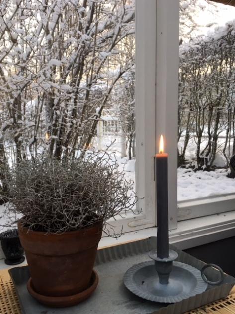 Växthus_ljus_2.12.17
