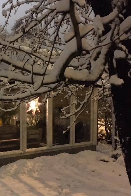 Växthus_snö_3.12.17