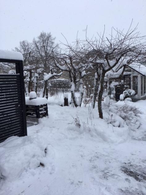 Gården_snö_180118