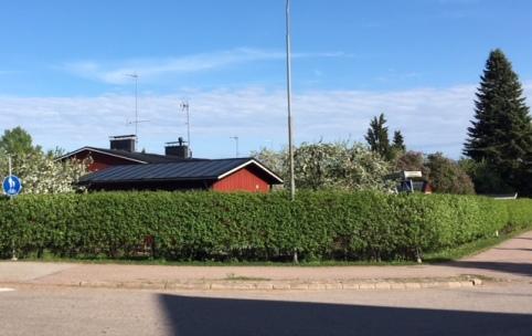 180518_Hagtornshäck